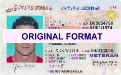 Online license renewal south africa
